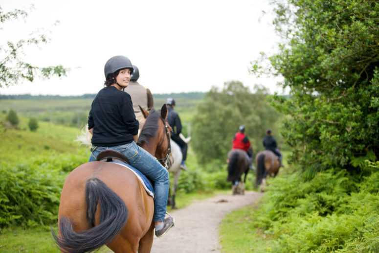 Equitation dans la campagne anglaise